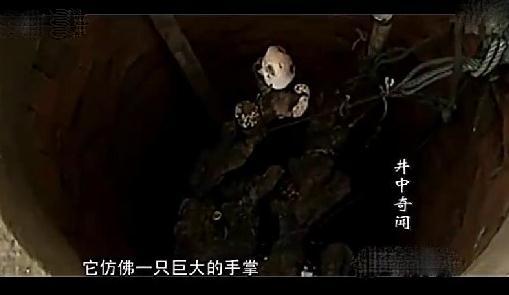 山村古井惊现诡异生物 老者道出真相(图)