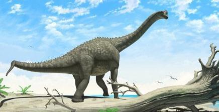 盘点世界十大迷你恐龙