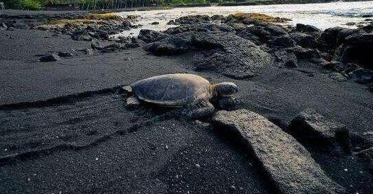 世界十大奇特海滩:梦幻与浪漫结合的撩妹圣地