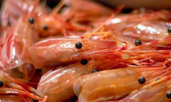 吃货们注意了!这七类食物含有剧毒绝不能吃
