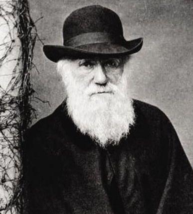 达尔文成就介绍 达尔文晚年介绍