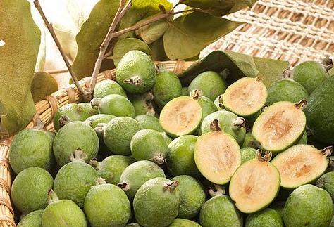 盤點世界上25種最奇葩的水果 你見過多少種呢