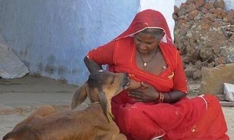 印度最雷人奇异风俗