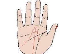 手掌的命运线笔直有何寓意?命运线止于智慧线下好吗