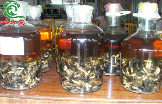 十個嚇跑女人的壯陽藥酒:喝完虎虎生威