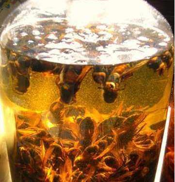 十个吓跑女人的壮阳药酒:喝完虎虎生威