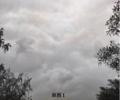 卫星拍到的真龙凤凰