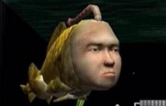 现实生活中的人面鱼图片:人面鱼手机游戏介绍