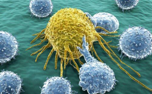 揭秘:男人最易患的十大癌症及预防癌症的秘方