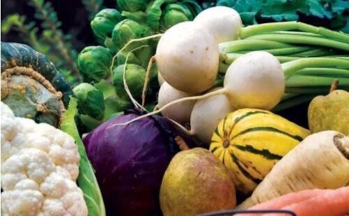 盤點十大有抗癌作用的野菜,苦菜可抑制白血病