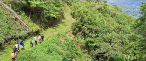 全球最危險的徒步線路排行榜,中國華山玩的就是心跳