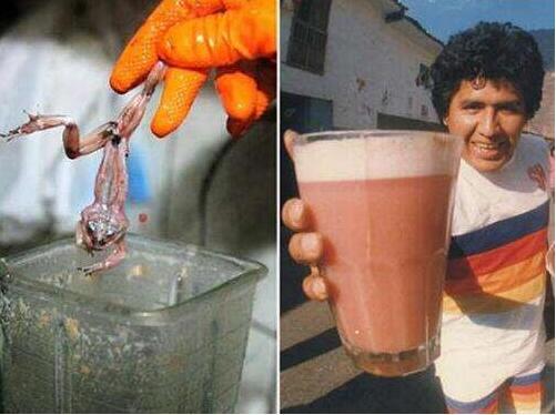 全球十大恶心食品排行榜:青蛙汁你敢喝吗?