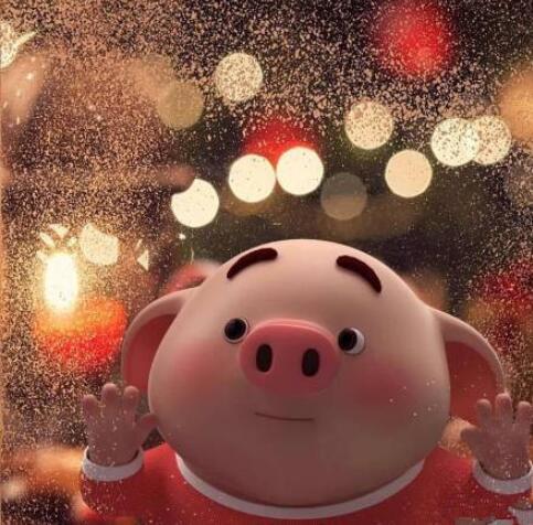 2019猪年头像大全:猪年本命年戴什么饰物好