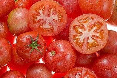 吃番茄可以减肥吗,番茄要怎么吃对减肥才有效果