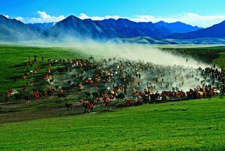 国内哪些景点适合亲子游,十大中国亲子游景点排名