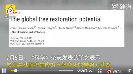 应对全球变暖最经济有效的方法,种一万亿颗树
