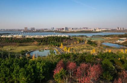 武汉必玩的地方一日游,武汉十大必去旅游景点排行