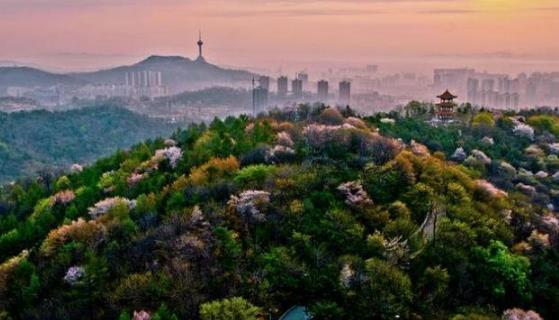 辽宁城市面积排名前十名,鞍山市面积排名第几呢