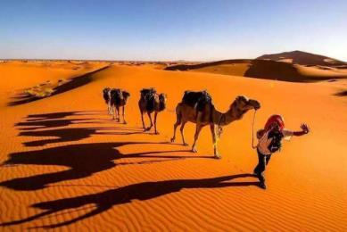 荒漠和沙漠的区别是什么,盘点世界十大荒漠排行