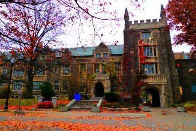 心理学可以找什么工作,十大加拿大心理学专业大学排名