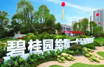 2019中國房地產開發商排名前十,恒大排第一