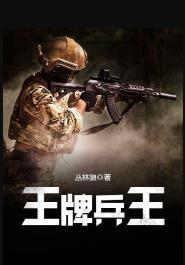 最最经典特种兵的小说:十大巅峰特种兵小说