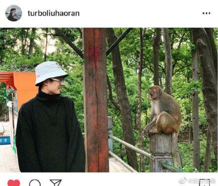 刘昊然和猴子对视太搞笑,看来我和我的家乡拍摄很顺利