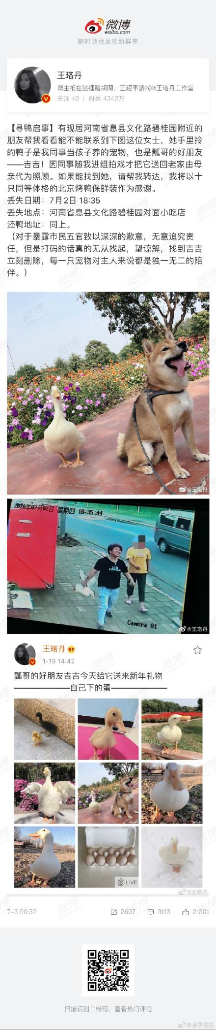 王珞丹发布寻鸭启事,飘哥的好伙伴吉吉被人抓走了