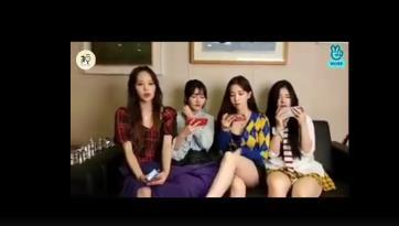 韓女團成員用衣服遮腿被阻止,FANATICS女團成員資料