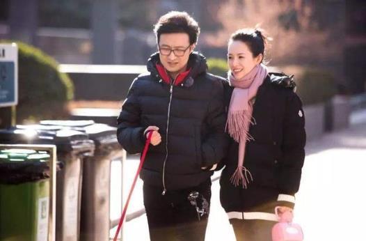 章子怡发文否认怀孕传闻,新晋成员是两只加菲猫